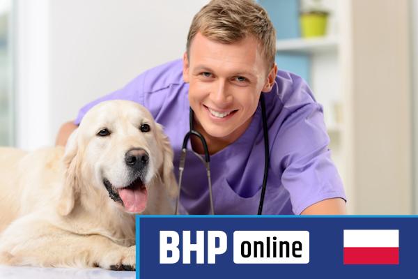 Szkolenie okresowe BHP dla  Lekarzy Weterynarii